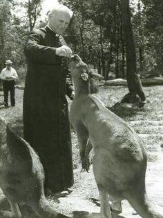 Saint Pope John Paul II feeding a kangaroo Jean Paul Ii, Pope John Paul Ii, Paul 2, Catholic Saints, Roman Catholic, Holy Art, Holy Holy, Johannes Paul Ii, Papa Juan Pablo Ii