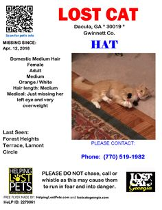MEDICAL Lost Cat - Dacula Ga - April 12 2018 Closest Intersection - Forest Heights Terrace Lamont Circle County - Gwinnett  #LOSTCAT #HAT #Dacula (Forest Heights Terrace Lamont Circle)  #GA 30019 #Gwinnett Co.  #Cat 04-12-2018! Female #Domestic Medium Hair Orange / White/Please  call or text if spotted. She was a Feral cat with an injured eye. She was fully vettedand spayed and had eye removed by Planned Pethood of Georgia on 7-17-17.Her Left ear was tipped also.She has warmed up to us but…