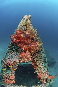 Le barriere artificiali o Artificial reef sono strutture sommerse costruite dall'uomo per favorire la biodiversità marina, come ad esempio, ostacolare la pesca a strascico illegale, incrementare rifugi per le nursery e il ripopolamento ittico, aumentare il substrato adatto agli organismi marini sessili, favorire la riproduzione di specie ittiche di rilevanza economica, ecc. I materiali di costruzione delle barriere artificiali possono essere svariati: carcasse di automobili, strutture…