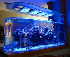 Rocketman's reef aquarium is one to see! http://www.3reef.com/forums/show-off-your-fish-tanks/rocketmans-new-dual-175g-bullnose-build-thread-100463.html