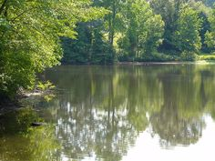 Guilford College Lake