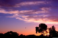{Sunsets} Sunset 22 22nd January 2014 © Violet Ashes 2014 #CanonEOS450D #sunset #sky #VioletAshes #Adelaide #SouthAustralia #Australia