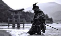 Samurai torii gate