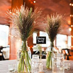 Wheat in tall containers could be fun