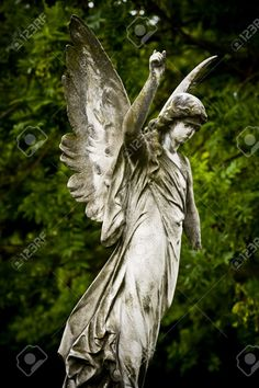 Hook Of An Essay Old Cemetery Angel Sculpture Made Of Stone Where To Find Essays also Citizen Kane Analysis Essay  Best Angel Sculpture Images  Angel Sculpture Cemetery Angels  Two Ways To Belong In America Essay