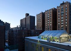 This is my 2nd grader's school! They built a greenhouse on the roof which is used for their science classes and features an aquaponic garden. Manhattan School for Children. So visionary!!