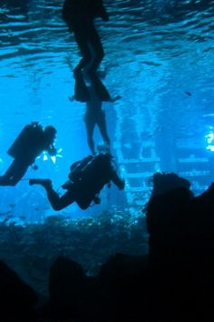 Playa del Carmen - Things To Do - Scuba - Gran Cenote Dive - Tour Image 04