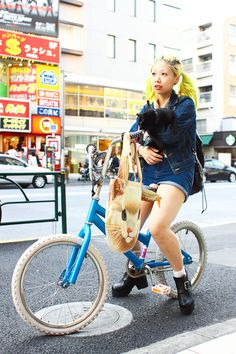 Bicycle and kitty