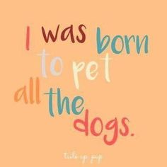 Dog sayings, dog quotes, pet the dogs Deep And Funny Thoughts About The Animals In Our Life Dogs Quotes Rescue Cats 36 Super Ideas Dog Quotes Love, Sad Quotes, Inspirational Quotes, Quotes On Dogs, Sweet Dog Quotes, Quotes About Dogs, Dog Qoutes, I Love Dogs, Puppy Love