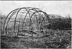 Frames-of-structures-ready-to-be-covered-with-mats-or-sheets-of-bark
