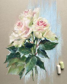 В моем сегодняшнем сторис очень красивые и нежные розы. И вот они уже на бумаге И ведь на бумаге Derwent. Видимо, я решила израсходовать весь свой скромный запас #пастель #розы #цветы #softpastel #softpastels #derwent