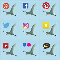 Misiryeong Online Social Networks * Comments or Questions? Email us at: misiryeong@hanmai...   미시령 온라인 네트워크
