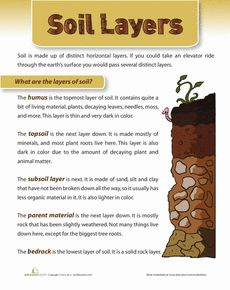 "Lesson Idea: This worksheet can be used to study soil layers. This is an important part of the Grade 3 science unit entitled, ""Soils in the Environment""."
