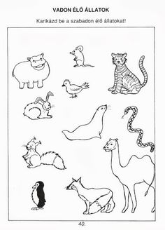 Én és a természet - Ibolya Molnárné Tóth - Picasa Web Albums Cicely Mary Barker, Clip Art, Album, Education, Math, School, Camels, Archive, Picasa