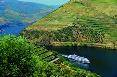 Douro Valley CC BY-NC-ND - Douro Azul #Portugal