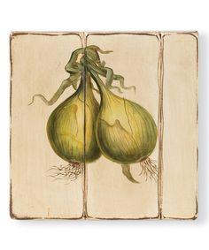 Look what I found on #zulily! Vintage Onion Wall Art #zulilyfinds
