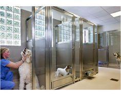 Woodhaven Veterinary Hospital   Hospital Design
