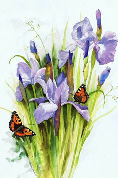 Small Tortoiseshell butterflies on Irises watercolour by Julie Horner UK artist