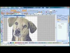 Freehand embroidery - Wilcom EmbroideryStudio - YouTube