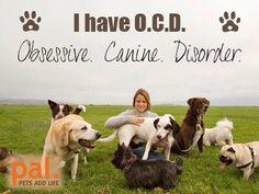 My diagnosis, OCD