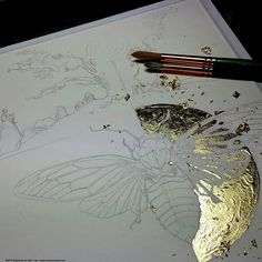 """Stephanie Law - """"The minutia of existence is transformed from drabness by its potential to be magical."""""""