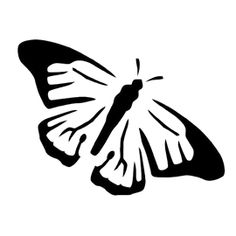 Butterfly Stencil D