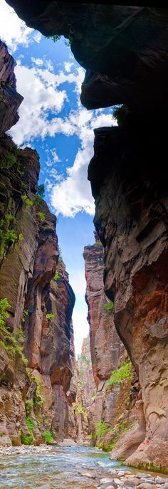 Zion National Park Narrows, Utah. Such a cool sight!