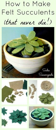 Who else struggles to keep succulents alive? They're so popular and so adorable, but I just have no luck...until now! DIY succulents from good quality felt are the PERFECT craft project for those of us with thumbs more brown than green. #SadieSeasongoods /  www.sadieseasongoods.com