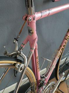 Freschi in pink