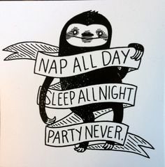 Sticker: Nap All Day Sleep All Night Party Never Sloth - by Nation Of – Silver Sprocket