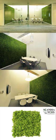 Office Interior Design, Interior Decorating, Office Interiors, Island Moos, Vertical Garden Plants, Moss Wall Art, Green Wall Art, Landscape Elements, Living Roofs