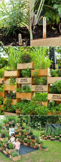 Vertical garden from old crates. It allows plants to extend upward rather than grow along the surface of the garden. Doesn't take a lot of space and look so beautiful at the same time.