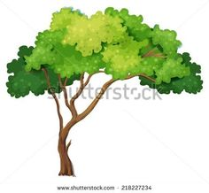 stock-vector-illustration-of-a-close-up-tree-218227234.jpg (450×416)