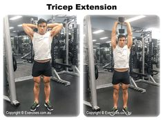 Tricep extension is an exercise that's great for building your arm strength while targeting just the triceps alone.  This exercise should be done in conjunction with another tricep pressing exercise such as a bent over tricep extension or a rope pressdown to target all heads of the triceps.  Watch a demo... https://www.exercises.com.au/tricep-extension/