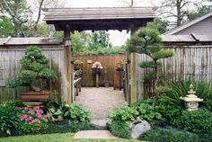 Japanese gate and Bonsai garden. I believe this is at Huntington Gardens in Pasadena, CA #landscape #design