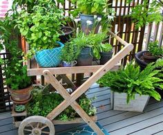 pflegeleichte balkonpflanzen den balkon leicht und schnell versch nern pflegeleichte. Black Bedroom Furniture Sets. Home Design Ideas