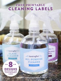DIY cleaner fan? Print out these Free Printable Cleaning Labels from Elegance and Enchantment