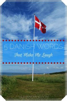 5 Danish Words That Make Me Laugh on Danish flag in field
