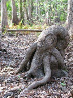 octotree