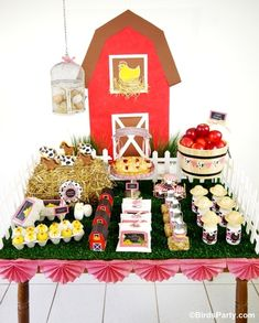 Barnyard Red Barn Farm Birthday Party Ideas
