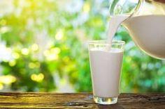 Raw Milk Benefits Skin, Allergies and Immunity Dieta Fodmap, Body Crunch, Raw Milk Benefits, Health Benefits, Source De Calcium, Allergies Alimentaires, Detox Kur, Beachbody Blog, Lactose Intolerance