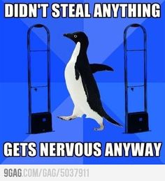 Awkward pinguin