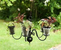 Chandelier Turned Pretty Planter by jackie