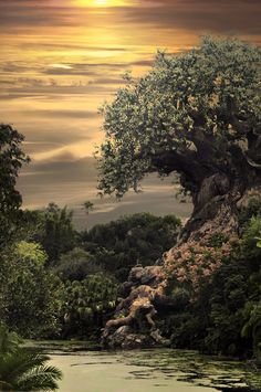Tree of Life by ~Real-Nela