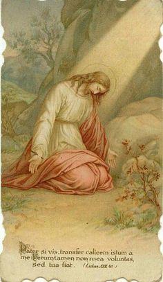 Agony in the Garden God and Jesus Christ Holly Pictures, Jesus Pictures, Christian Posters, Christian Art, Catholic Art, Religious Art, Holy Mary, Rosary Mysteries, Agony In The Garden