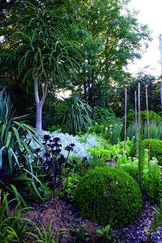 Garden by Michael Cooke