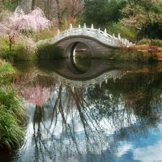 I would love to take a stroll on this bridge wearing a long white dress and carrying a pretty white eyelet covered parasol.