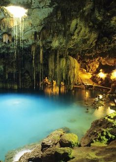 Secret lagoon. wish it told me where i can find it! This is the Cenote Dzinup just 5 min from Valladolid Yucatan Mexico