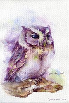 PRINT Daydream Watercolor painting x 11 от WaysideBoutique Owl Watercolor, Watercolor Sketchbook, Watercolor Paintings, Watercolor Owl Tattoos, Owl Art, Bird Art, Paper Owls, Beautiful Owl, Artwork Prints