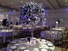 Lemon leaf tree table centerpiece Northern Greenhouses #wedding @ Drury Lane, Oak Brook